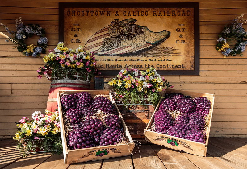 Buena Park_Knott's Berry Farm